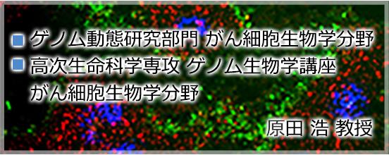 バナー1_harada